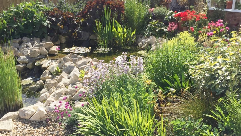 Rustic Rock Garden